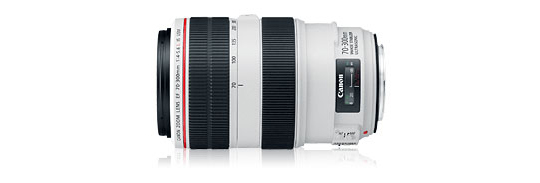 Canon 70-300 f/4-5.6L IS