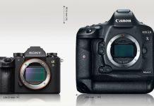 Sony a9 сравнение с Canon