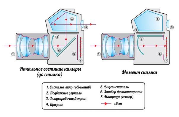 Строение зеркальной камеры