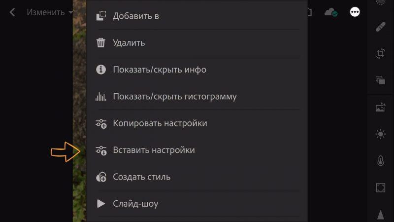 Копирование пресета в Lightroom mobile